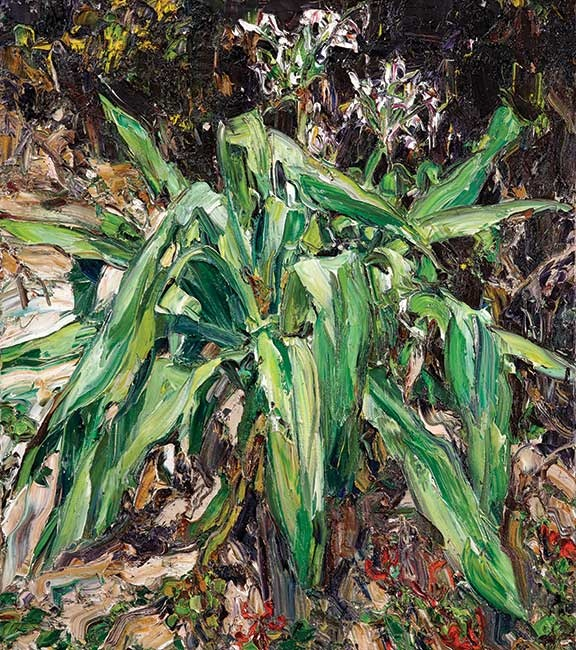 © Nicholas Harding ~ Swamp Lily (with glory lilies) ~ 2012 oil on Belgian linen at Tim Olsen Gallery Sydney Australia