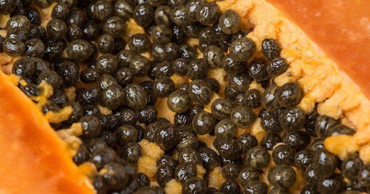 Comment manger des graines de papaye afin de désintoxiquer votre foie, vos reins ainsi que guérir votre système digestif