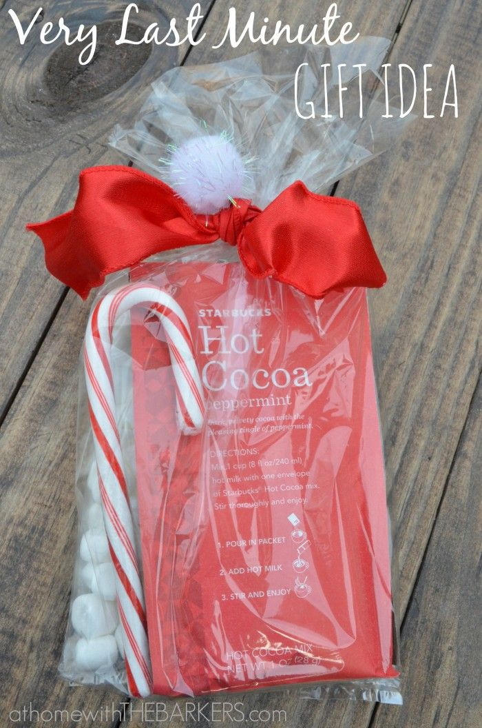 Very Last Minute Gift Idea - 3 Starbucks Hot Cocoa packets (found at Walmart), snack size marshmallow packs and candy cane.