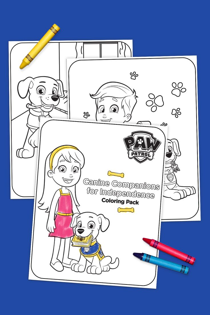 Canine Companions for Independence Coloring Pack