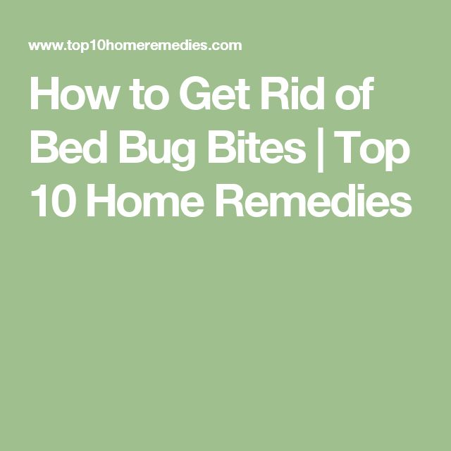 17 Best Ideas About Bed Bug Remedies On Pinterest Bed Bugs Bug Trap And Curse Spells