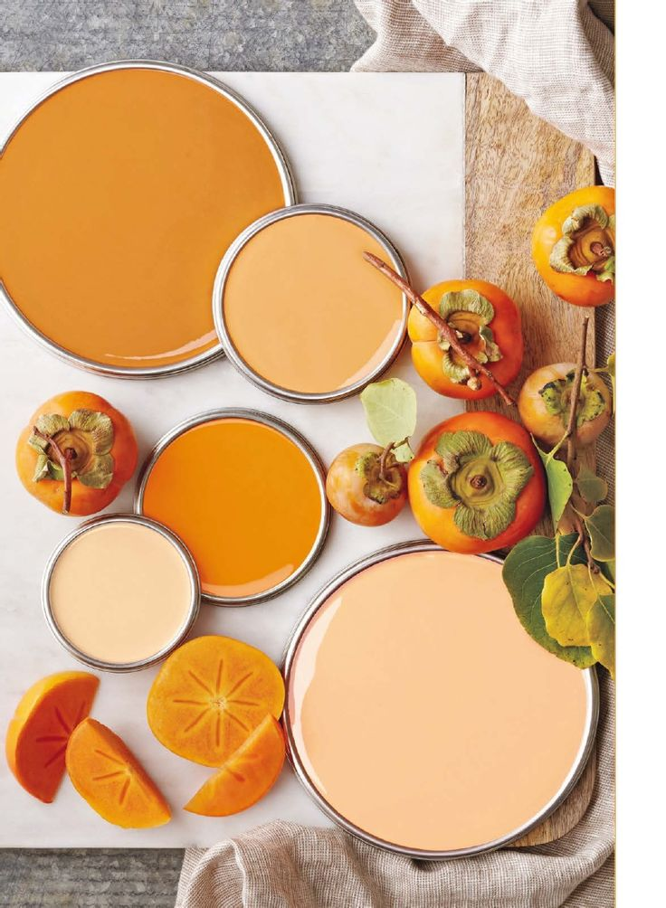 Pretty Persimmon Color Pallet.  Better Homes & Gardens Nov 2014 issue
