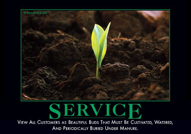 Service - View all costomers as beautiful bud that must be cultivated, watered…