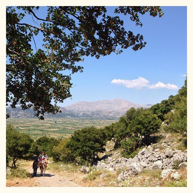 Sur les hauts plateaux de Crète