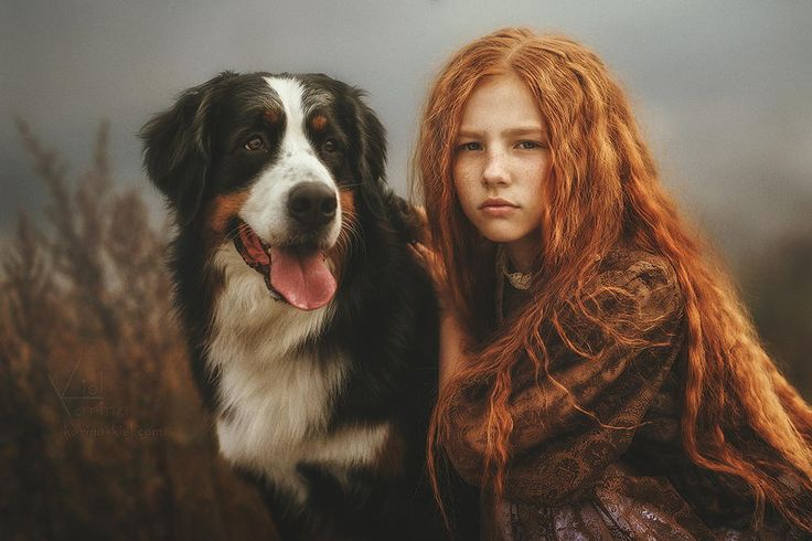 Young redhead girl with a bernese mountain dog