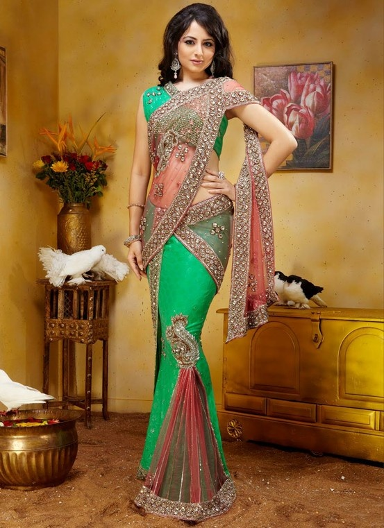 Silk & Net Ornate Saree