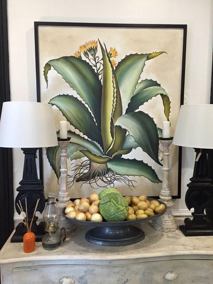 Aloe - South African Interior Design Inspiration
