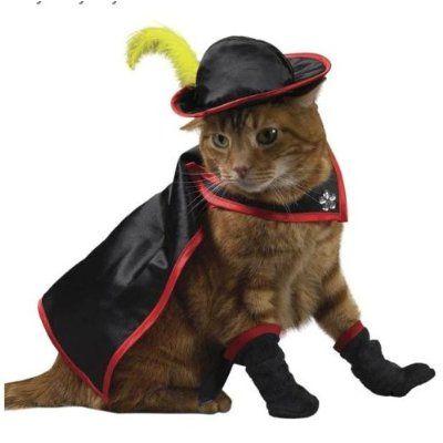 disfraz halloween gatos
