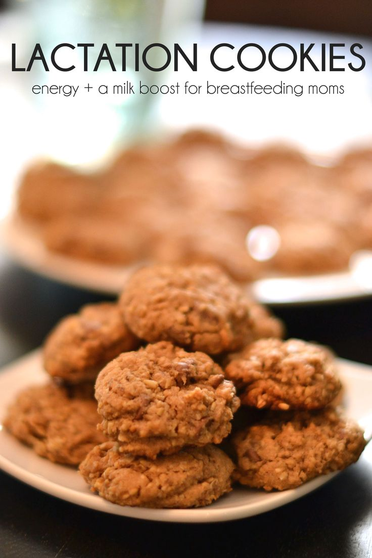 Best Chocolate Chip Lactation Cookie Recipe