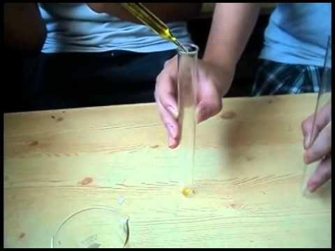 Extracción de lipidos (experimento)