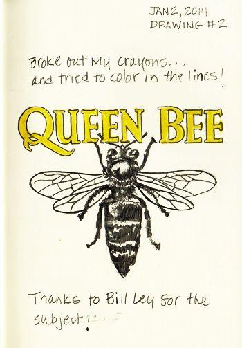 QUEEN BEE! Drawing #2 01022014 | Sketching ROCKS ...