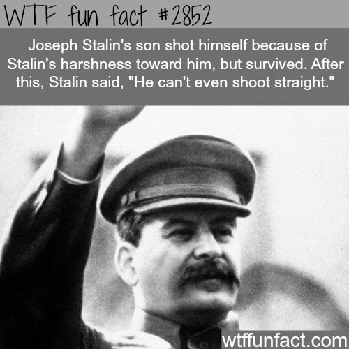 1000+ ideas about Joseph Stalin on Pinterest | Soviet ...