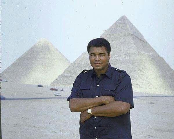 محمد علي كلاي في مصر New Egypt Egypt Egypt Tourism