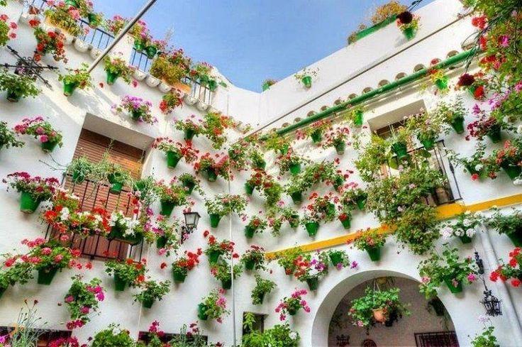 Дворики Кордовы – #Испания #Андалусия (#ES_AN) Май - отличное время для путешествий. И слишком много на планете мест, где хочется оказаться в это время. Испанская Кордова - одно из них. Ведь в мае здесь проходит красивейший Фестиваль патио! http://ru.esosedi.org/ES/AN/1000236718/dvoriki_kordovyi/