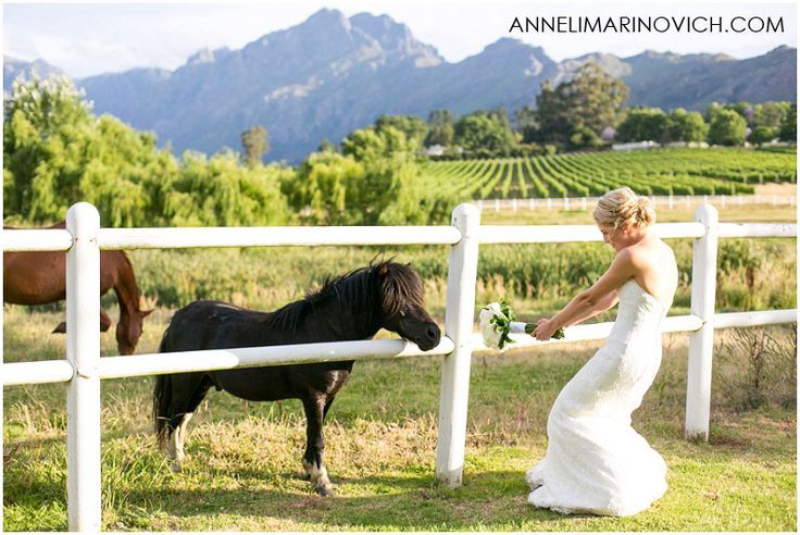 Zorgvliet-Wine-Farm-Wedding-Anneli-Marinovich-Photography-402