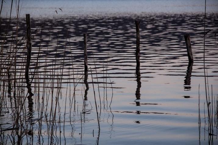 Acqua silente..silent water..  Lago di Vico. Photo R. Cianchi