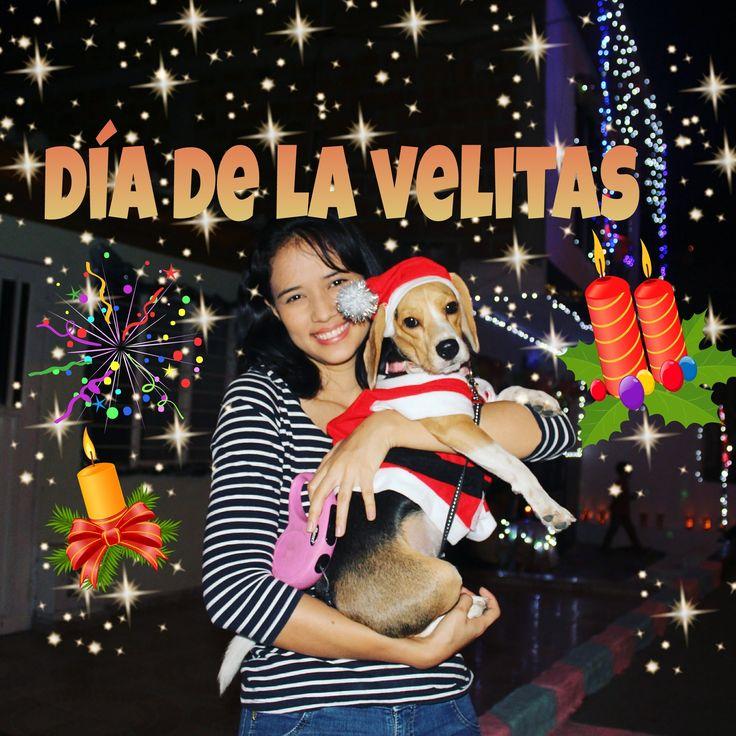 """Día de las velitas - Day of candles in Colombia Traditional holiday in Colombia """"Día de las velitas- Noche de las velitas"""" Day of candles. Christmas taxi Rem..."""