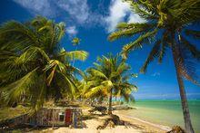 Nordeste: conheça 15 belas praias e escolha as que você vai visitar    - Viagem e Turismo - Sonhe. Planeje. Embarque.