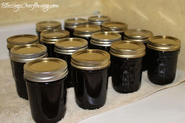Homemade grape jelly using only 2 ingredients.