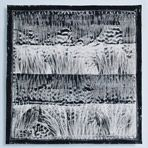 Pauline Burbidge - Reeds 10