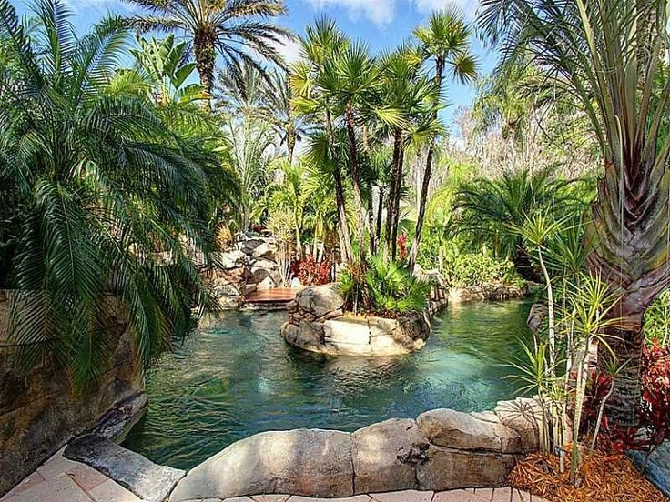 Tropical Landscape Yard With European Fan Palm Tree Pond