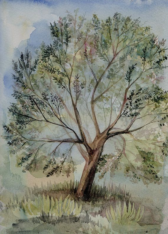 Watercolor tree by Watercolorhoney on Etsy
