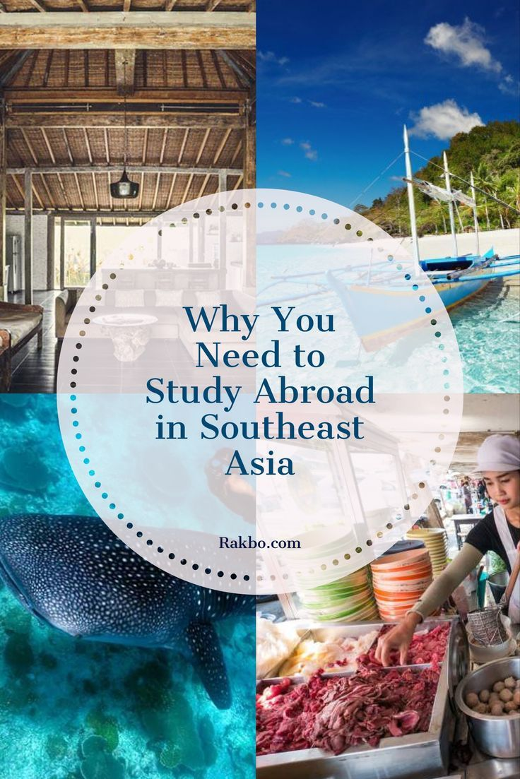 Exotic? Cheap? Adventure of a lifetime? Yes, yes, and heck yeah! If you need any more reasons to study abroad outside of Europe, check out our guide to studying abroad in Southeast Asia. You (and your bank account) wont regret it. | #TheOilyAnalyst #LifestyleBlogger #AnimalAdvocate #StarWars #EssentialOils #SeekerofLaughter #BloggingAdvice #BloggingHelp #Budgeting #Debt #MakeMoney #PetCare #YoungLivingEssentialOils #YLEO #Funny #Comedy | theoilyanalyst.com