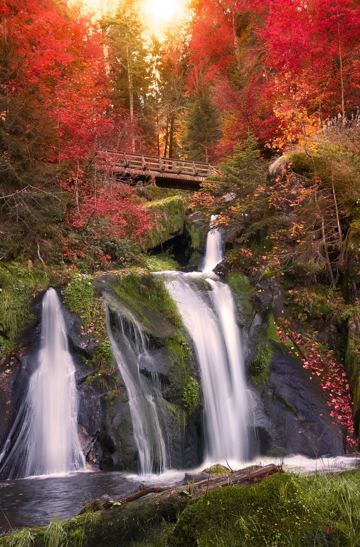 ✯ Black Forest Waterfall - Triberg, Germany