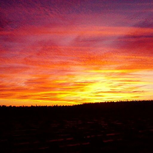 Bright sunset!