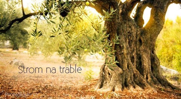 Strom na trable ProNladucz
