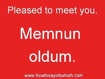 43 best learning turkish images on pinterest languages turkish memnun oldum mem noon oll doom nice to meet you m4hsunfo