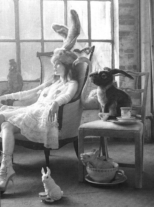 All Alice/karen cox....Alice in Wonderland Inspired Photography