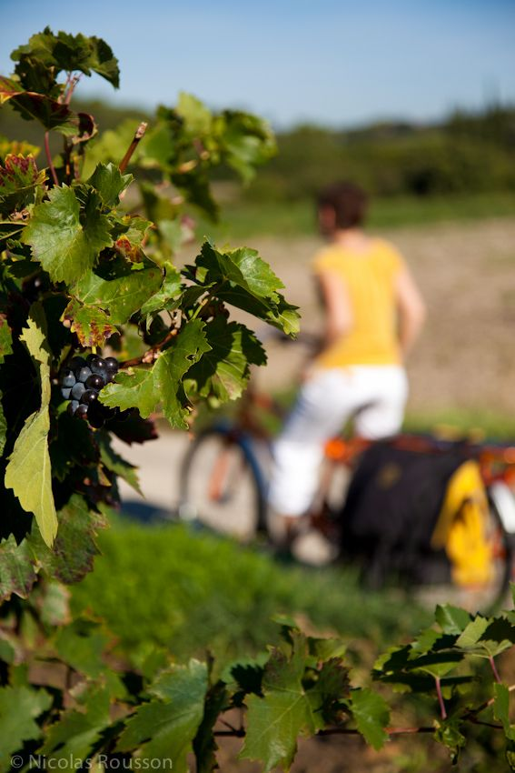 Petite pause sur la route entre Bollène et le Uchaux...  http://www.escapado.fr/?article219