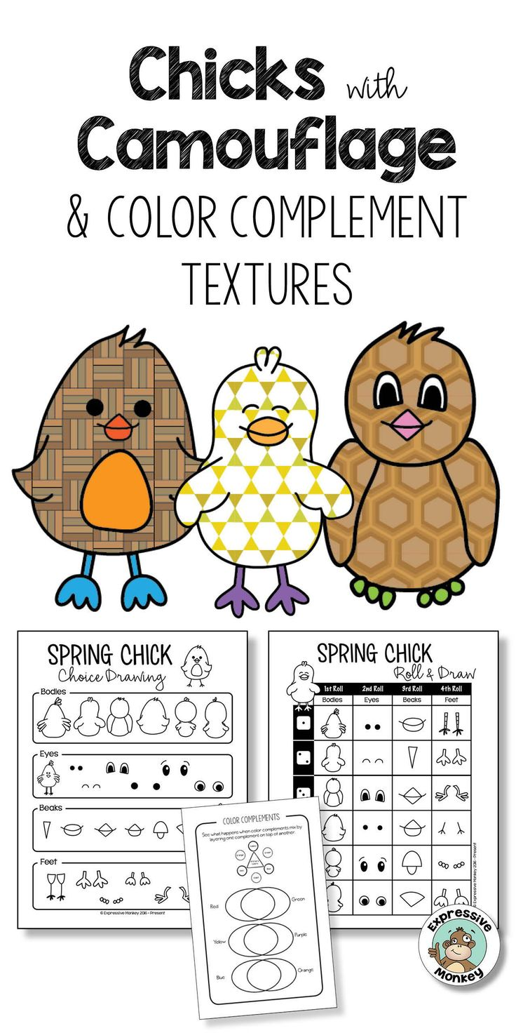Animal Adaptations Chicks With Camouflage Art Activity