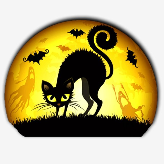 Millions Of Png Images Backgrounds And Vectors For Free Download Pngtree Halloween Images Halloween Silhouettes Halloween Cat