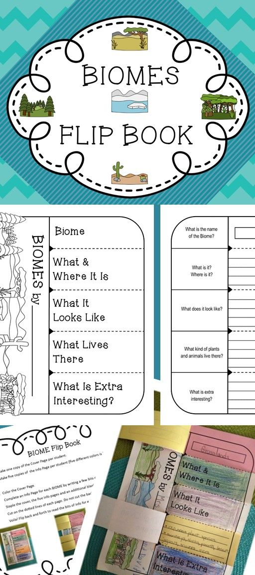 Let your kids use this FLIP BOOK to show what they know about BIOMES!  Simple directions! Very little prep! Great activity!