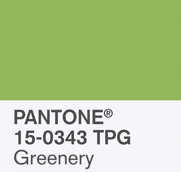 pantone-color-of-the-year-2017-greenery-16_e