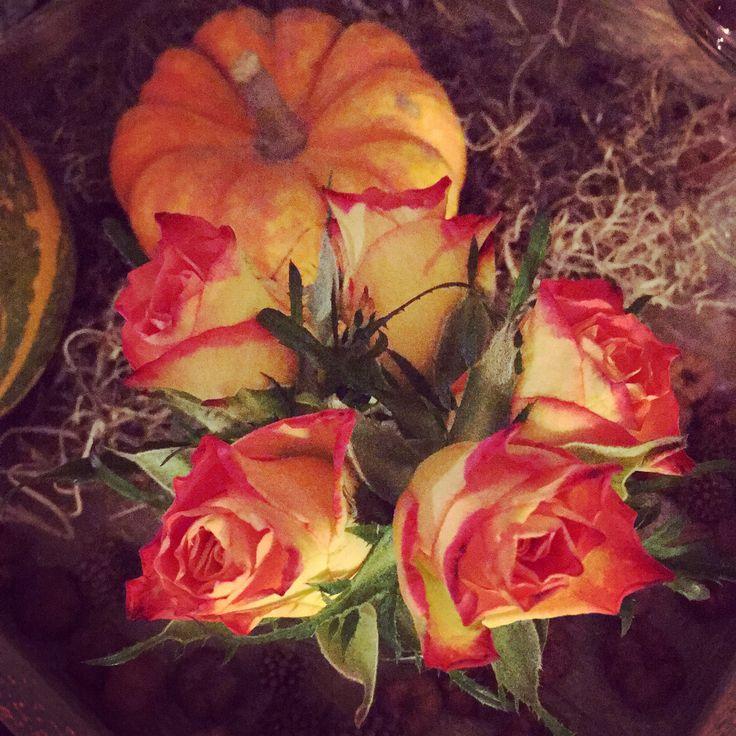 Herfstdecor op de salontafel met oranje rozen en een pompoen/falldecor on de coffeetable with orange roses and pumpkin