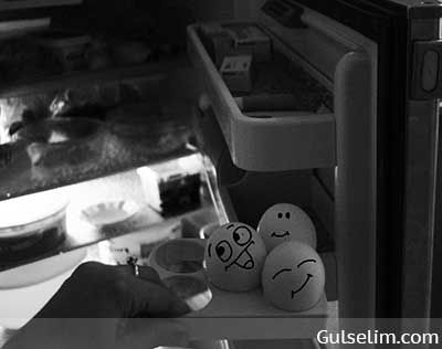 Yumurtaların hikayesi komik yumurtalar komik resim funny eggs story 18