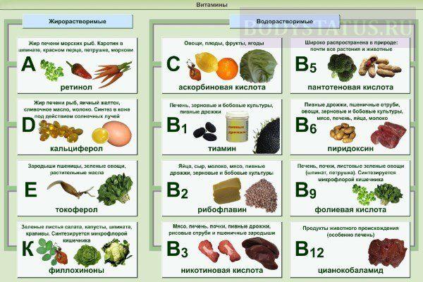 Для правильной работы организма нужны витамины А, С, Д, Е, группы В. Важнейшие витамины можно получать из продуктов питания. Источники витаминов: абрикос - помогает восполнить нехватку витамина А; кресс салат - источник витамина Е, С; крабы - источник цинка и витамина В12; авокадо - включает ненасыщенные жиры, олеиновую кислоту; малина - насыщает организм витамином С; обезжиренное молоко - источник рибофлавина, витамина А, D; манго - включает витамины А, С; лососевые рыбы - превосходный…