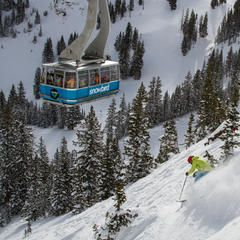 70 best SHRED images on Pinterest | Skiing, Utah and Powder