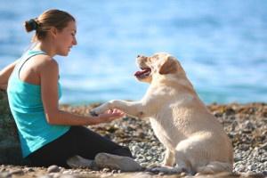 IO NON TI ABBANDONO è AMORE, quello che ci lega ai cuccioli, ai nostri amici a quattro zampe. Chi ama un animale domestico non lo abbandonerebbe mai, e mai sopporterebbe l'idea di vedere o anche solo sapere che un cane, un gatto, un coniglio, una tartaruga o qualsiasi altro Pet è stato lasciato solo, abbandonato al proprio destino. La campagna di Pets Paradise è proprio animata da questi sentimenti. http://www.petsparadise.it/ionontiabbandono/che-cose-io-non-ti-abbandono/