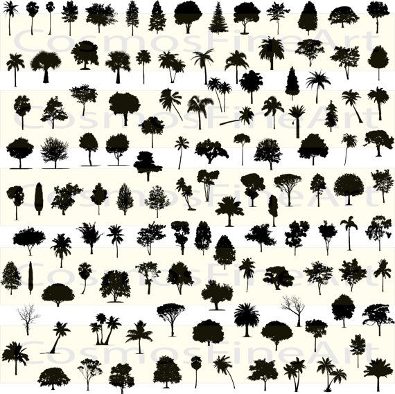 Tree silhouette digital clipart  120 PNG 120 JPG by CosmosFineArt