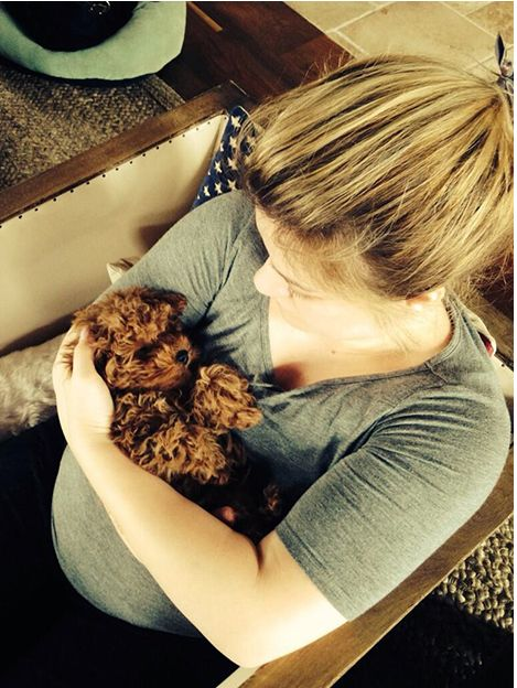 kelly clarkson picture of pregnacy | Kelly-Clarkson-Pregnant-new-Dog