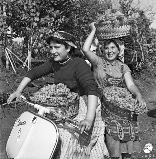 Italy, Lazio 1956 two girls with baskets full of grapes!