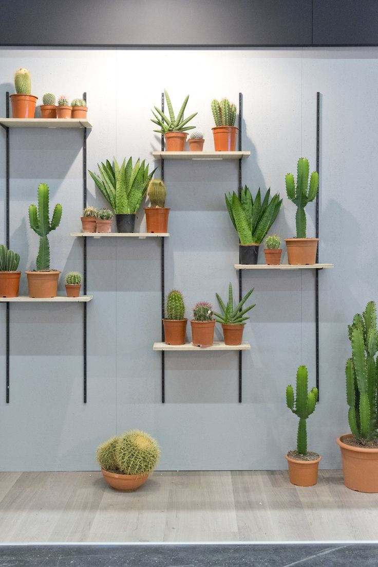 M s de 25 ideas incre bles sobre repisas para plantas en for Estantes para plantas exteriores