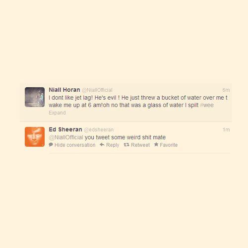... direction #funny tweets #ed sheeran #niall horan #one direction funny - http://ebooks2buy.biz/TweetSuccessGuide/