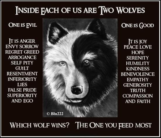 Which one will you feed?