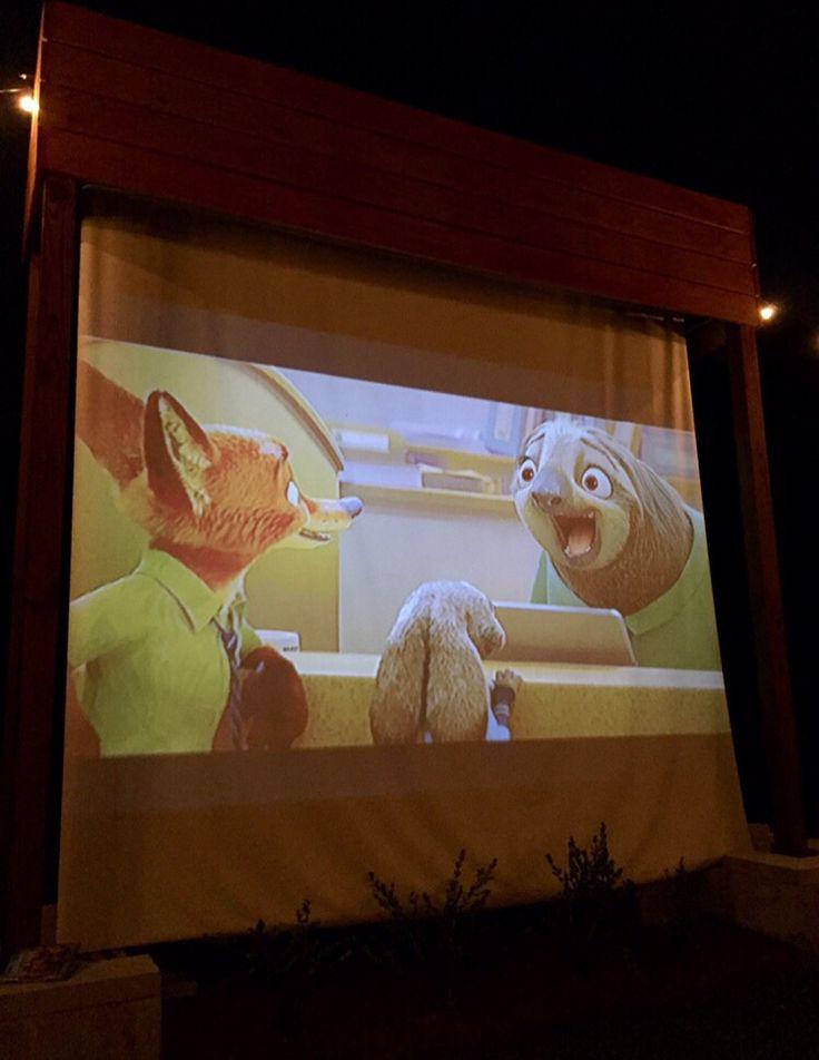 Zootopia Outdoor Movie Night