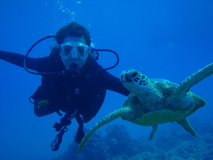 I really want to go scuba diving